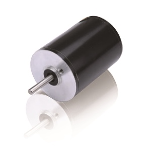 Brushless DC Motor R22BLDC