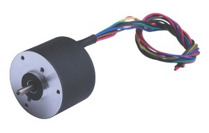 Brushless DC Motor R42BLDC